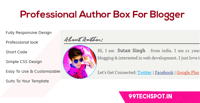 Stylish author box for website