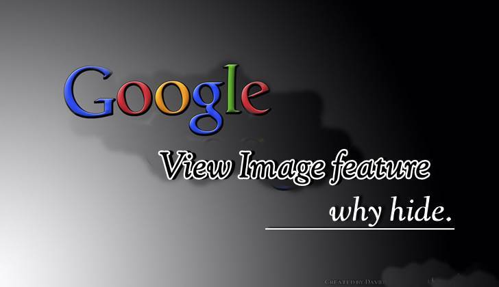 Google view image features