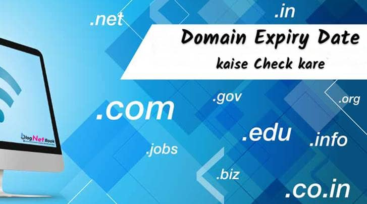 domain name expiry date