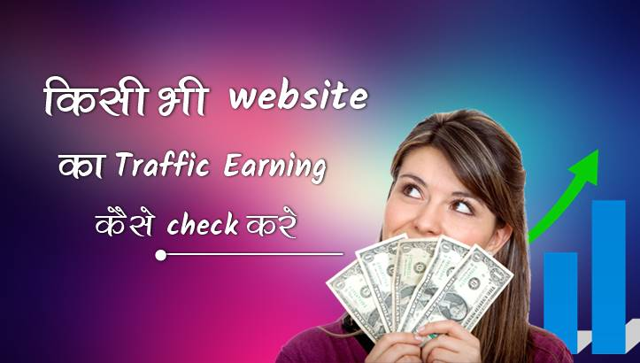 Check website traffic earning report